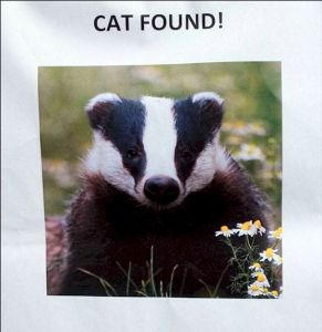 check your local notice boards !